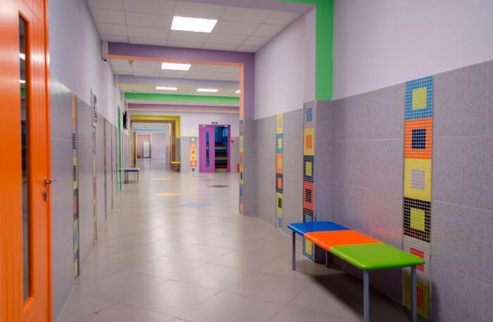 ГБОУ лицей № 226  ул. Бухарестская д.33 к. 6